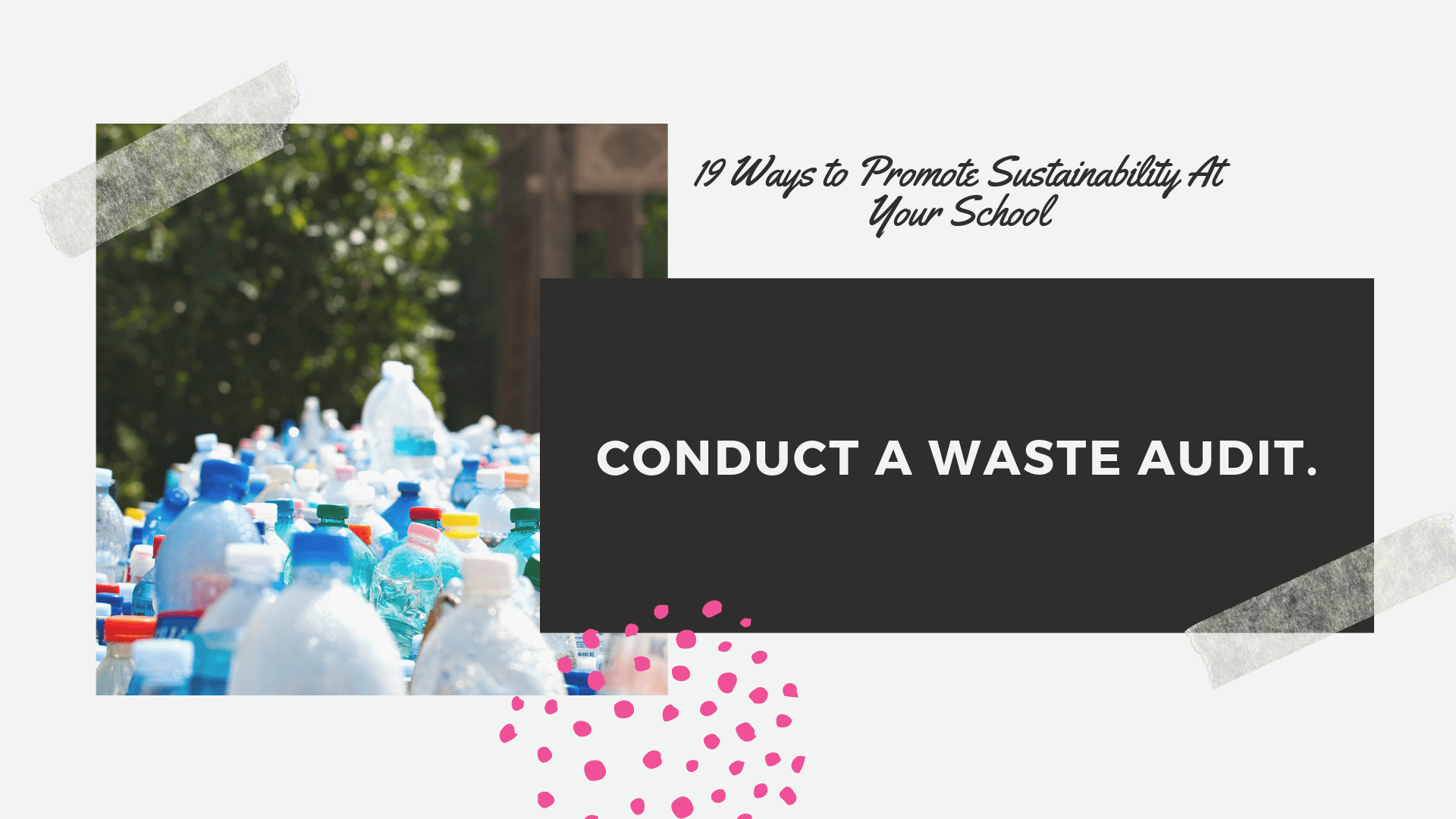 school waste audit