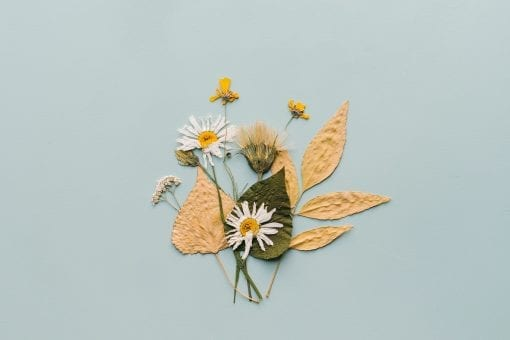 natural loose parts play dried flowers